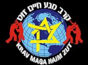 Krav Maga Haim Zut - London